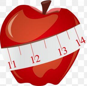 Vector Apple And Tape Measure - Tape Measure Measurement Clip Art PNG