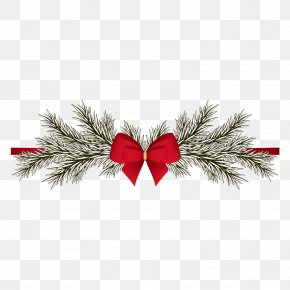Pine Bow Decorative Pattern - Christmas New Years Day Greeting Card PNG