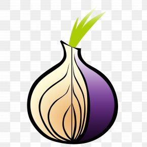 Onion - Tor Browser Web Browser .onion Onion Routing PNG