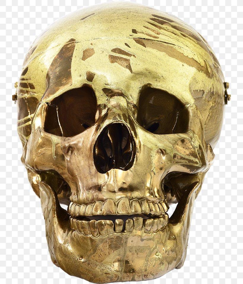 Skull Damien Hirst Schizophrenogenesis Artist Sculpture Png 739x959px Skull Art Artist Bone Damien Hirst Download Free