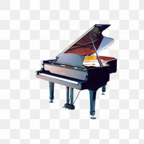 Piano - Piano Musical Keyboard Musical Instrument Harpsichord PNG