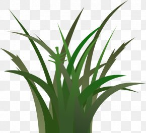Free Grass Cliparts - Free Content Lawn Clip Art PNG