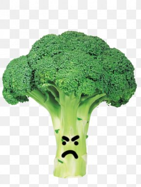 Broccoli - Broccoli Cabbage Vegetable Clip Art PNG
