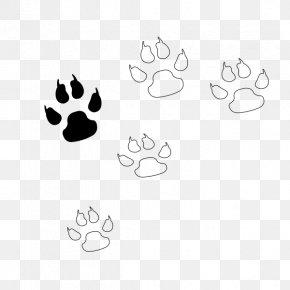 Claw Mark - Bear Claw Paw PNG