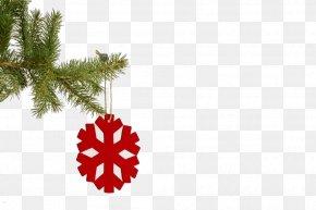 Christmas - Christmas Tree New Year Tree Snowflake PNG
