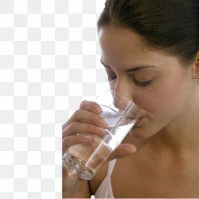 The Beauty Of Drinking Water - Drinking Water Water Filter PNG