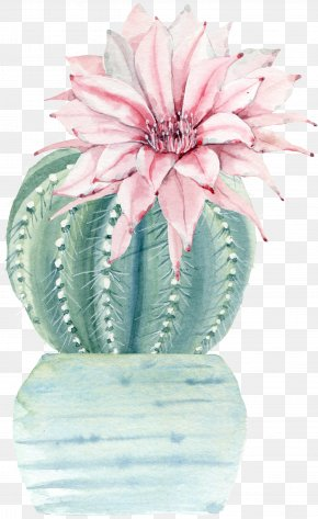 Cactus Drawing Watercolor - Watercolor Painting Drawing Art Illustration PNG