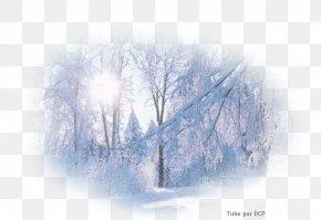 Snow - Snow Desktop Wallpaper Winter PNG