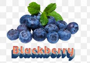 Juice - Juice Blueberry Pie PNG
