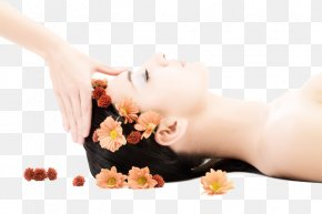 Women SPA Photos - Health Beauty Parlour Massage Therapy Woman PNG