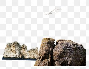 Stone Seagull - Rock Download Computer File PNG