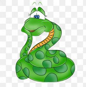 Cartoon Snake - Snake Green Anaconda Boa Constrictor Clip Art PNG