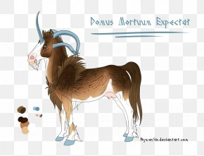 Goat - Cattle Goat Pack Animal Wildlife Cartoon PNG