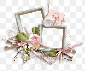 Birthday Card Design - Picture Frames Digital Photo Frame Clip Art PNG