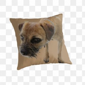 Puppy - Border Terrier Cairn Terrier Puppy Dog Breed Throw Pillows PNG