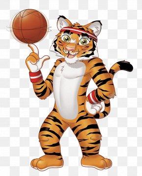 Tiger - Lion Siberian Tiger Wildcat Animal PNG