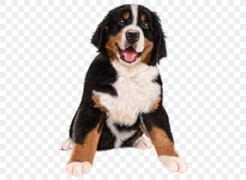 Bernese Mountain Dog Puppy Pupcakes A Christmas Novel