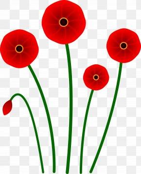 Cinnabon Cliparts - Poppy Flower Red Clip Art PNG