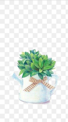 Potted Green Plants - Plant Leaf Devils Ivy Illustration PNG