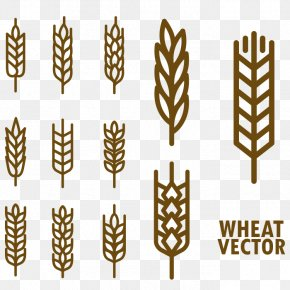 Hand Painted Wheat - Wheat Cereal Download PNG
