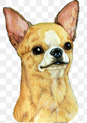 Chihuahua Art - Chihuahua Dog Breed Companion Dog Toy Dog Whiskers PNG