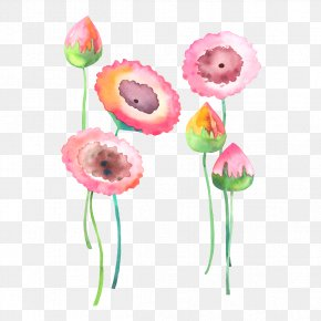 Watercolor Flowers Background Image - Watercolour Flowers Watercolor: Flowers Painting PNG