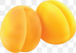 Yellow Peach Image - Peach Apricot PhotoScape PNG