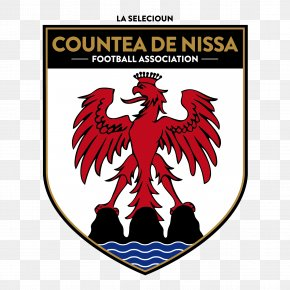 Football - County Of Nice National Football Team Padania National Football Team ConIFA World Football Cup South Ossetia National Football Team PNG
