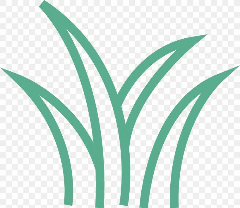 Leaf Logo Font Clip Art Plant Stem, PNG, 937x813px, Leaf, Family, Flower, Grass, Grass Family Download Free