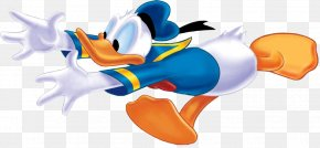 Donald Duck - Donald Duck: Goin' Quackers Mickey Mouse Daisy Duck Minnie Mouse PNG