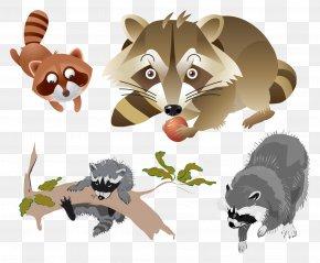 Raccoon - Raccoon Mask Carnival Bumper Sticker Squirrel PNG