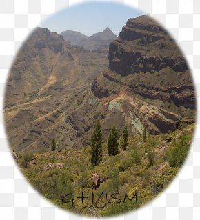 Bus - Gran Canaria Bus Mount Scenery Geology Excursion PNG