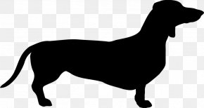 Heartbeat Vector - Dachshund Scottish Terrier Puppy Breed Clip Art PNG