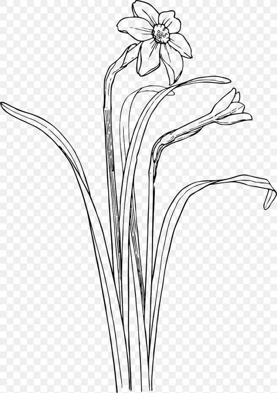 Flower Shrub Plant Stem Drawing Clip Art Png 902x1280px Flower Artwork Black And White Branch Bunchflowered