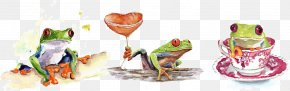 Vector Green Frog - Tree Frog Watercolor Painting PNG