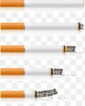 Cigarette Vector Material, - Cigarette Stock Photography Smoking Clip Art PNG