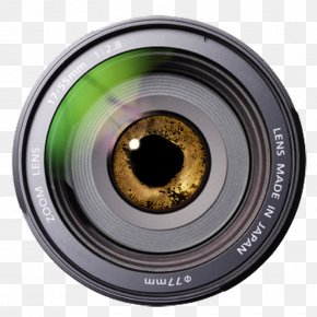 Camera Lens - Camera Lens Fisheye Lens Shutter Speed Photography PNG
