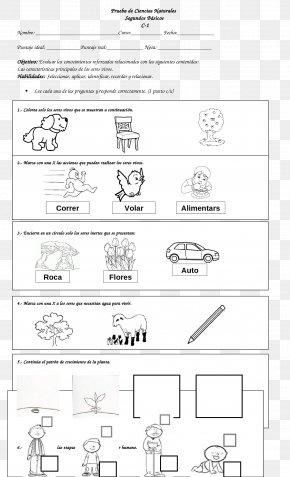 Design - Line Art Document Drawing Cartoon PNG