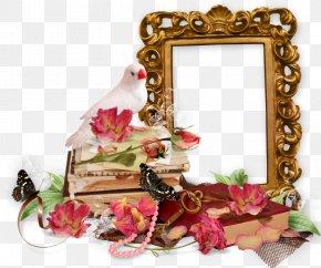Picture Frames Blingee Clip Art PNG