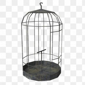 Gray Bird Cage - Birdcage Birdcage Parrot PNG