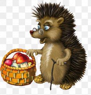 Hedgehog - Hedgehog Animal Child Clip Art PNG