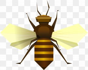 Bee - Bee Insect Apis Florea Clip Art PNG