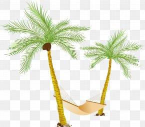 Palm Tree - Hammock Arecaceae Clip Art PNG