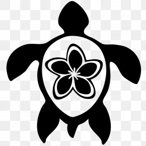Turtle - Sea Turtle Hawaii Drawing Clip Art PNG