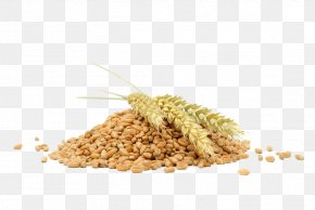 Natural - Stock Photography Wheat Ear Cereal Bulgur PNG
