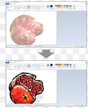 Paint Net - Photography 指導 Classroom Organism Microsoft Paint PNG