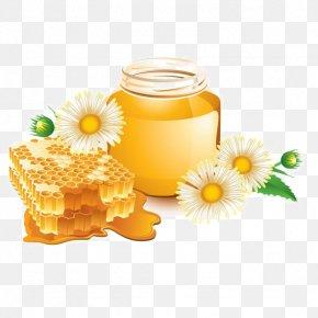 Wild Chrysanthemum Honey - Honey Bee Honey Bee Euclidean Vector PNG