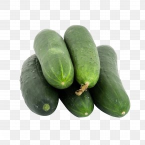 Cucumber - Cucumber Vegetable Seed Fruit Food PNG