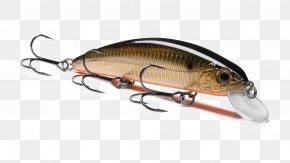 Northern Pike Plug Fishing Baits & Lures Spin Fishing PNG