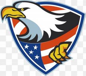 Flying Shield - United States Bald Eagle Illustration PNG